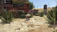 How to become a pig in GTA 5.