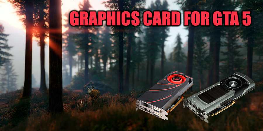 Which graphics card will be the best for GTA 5?