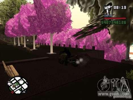 Small trivia for GTA San Andreas forth screenshot