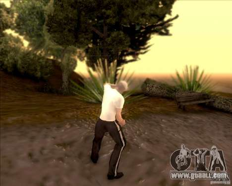 SkinPack for GTA SA for GTA San Andreas twelth screenshot