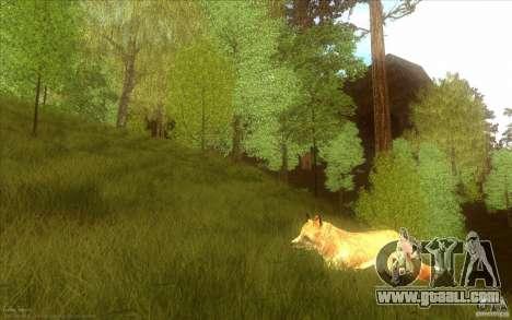 Wild Life Mod 0.1b for GTA San Andreas seventh screenshot