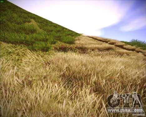 Grass form Sniper Ghost Warrior 2 for GTA San Andreas eighth screenshot
