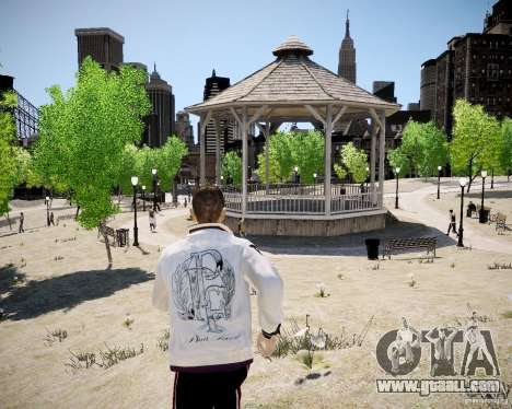 Young Niko for GTA 4 ninth screenshot