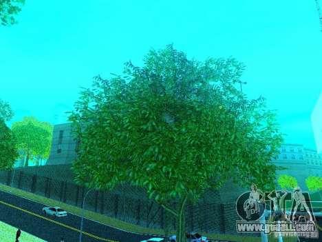New Color Mod for GTA San Andreas forth screenshot