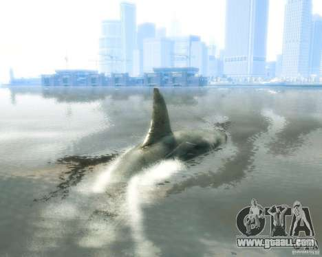Megalodon for GTA 4 right view