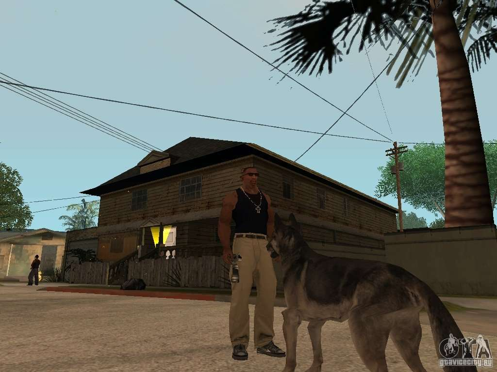 In Gta San Andreas How To Get A Dog