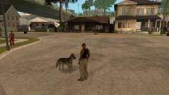 Dog in GTA San Andreas