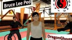 Bruce Lee Skin