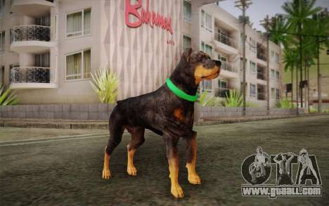 Rottweiler from GTA V for GTA San Andreas