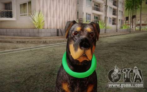 Rottweiler from GTA V for GTA San Andreas third screenshot