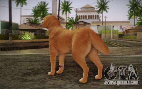 Rottweiler for GTA San Andreas second screenshot