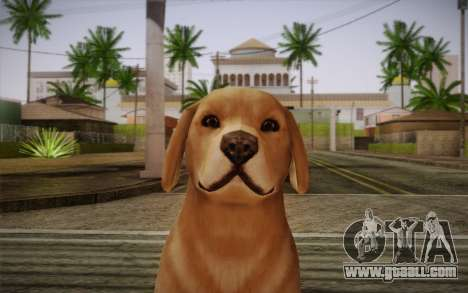 Rottweiler for GTA San Andreas third screenshot