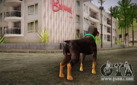 Rottweiler from GTA V for GTA San Andreas second screenshot