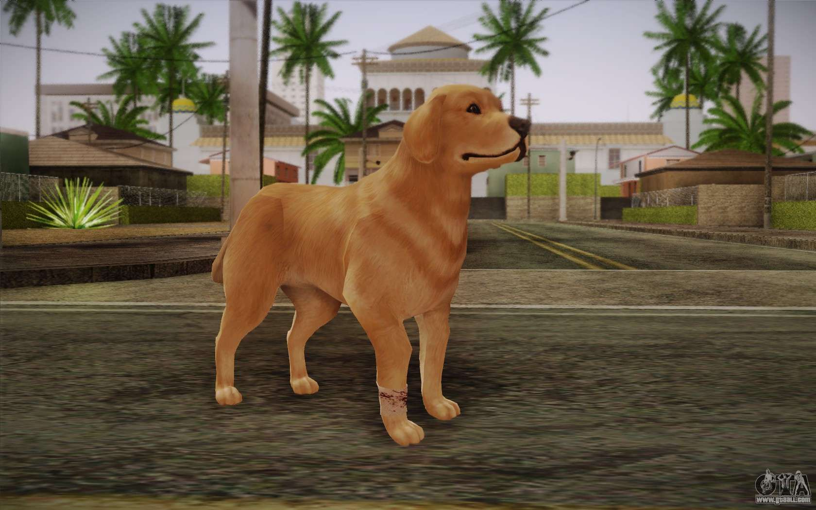 gta san andreas how to get a dog