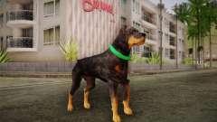 Rottweiler from GTA V for GTA San Andreas