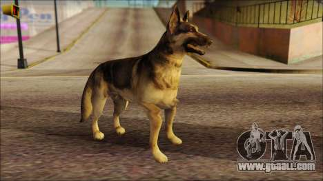 Dog Skin v2 for GTA San Andreas