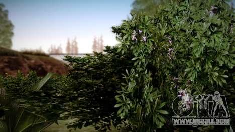 Graphic Unity v3 for GTA San Andreas fifth screenshot