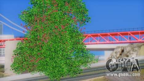 ENB Series by STEPDUDE 3.0 Beta for GTA San Andreas fifth screenshot
