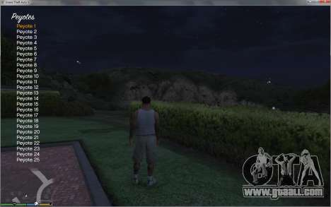 GTA 5 Collectable Collector eighth screenshot