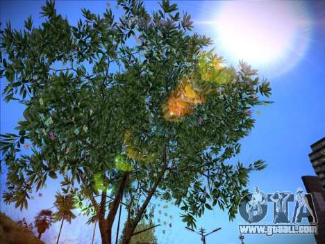 ENB Series Extreme 4.0 for GTA San Andreas second screenshot