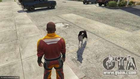 GTA 5 Animal Ark Shelter sixth screenshot
