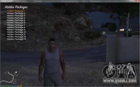 GTA 5 Collectable Collector fifth screenshot