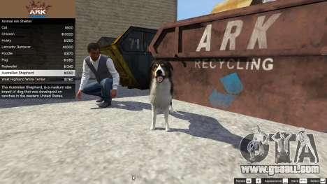 GTA 5 Animal Ark Shelter fourth screenshot