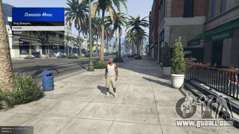 GTA 5 Scenario Menu 1.1 second screenshot