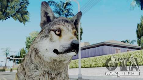 Wolf for GTA San Andreas