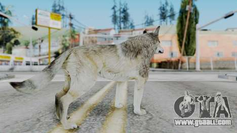Wolf for GTA San Andreas third screenshot