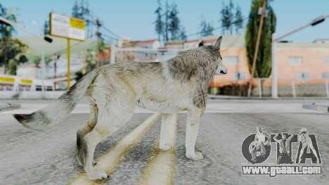 Wolf for GTA San Andreas third screenshot